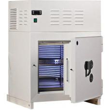 Сейф-холодильник СТ-306-50 NF 50 л 3 класс
